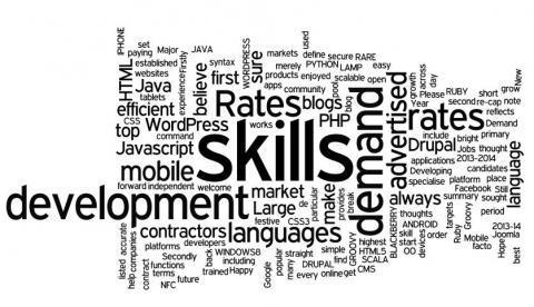 IT-skills-word-cloud_0
